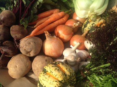 local harvest a multifarm csa handbook